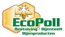 ecopoll - header1t